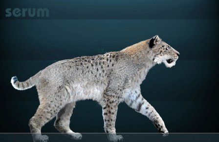 Учёные вывели новый вид саблезубых кошек