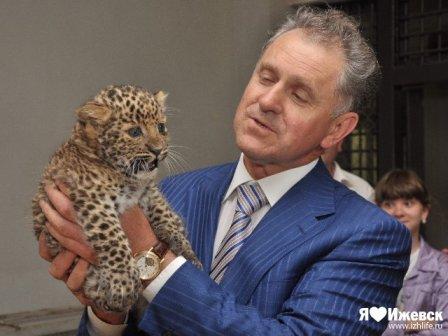В ижевском зоопарке показали детеныша леопарда