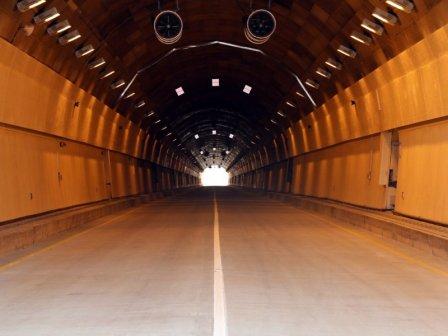 Дальневосточные леопарды начали пользоваться эко-тоннелем